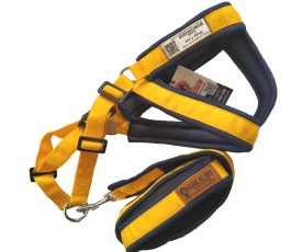 Smart Harness (Yellow and blue padded with Leash)