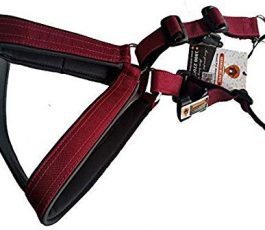 Smart Dog Harness Maroon Color With Leash