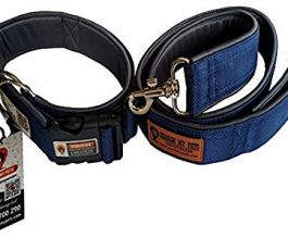 Blue Smart Dog Collar Belt with SMP Tag 1.5 Inch