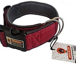 Maroon Smart Dog Collar Belt