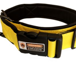 Yellow Color Smart Dog Collar Belt