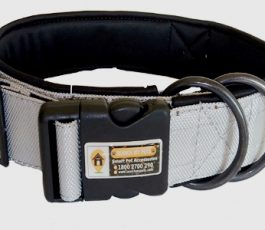 Silver Grey Color Smart Dog Collar Belt
