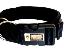Black Smart Dog Collar Belt With Leash