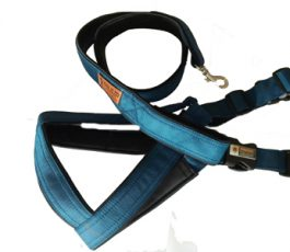 Smart Dog Harness Blue Color With Leash