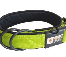 Green Color Smart Dog Collar Belt