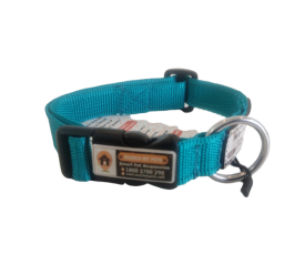 Sea Green 1 Inch Standard Smart Dog Collar, Anti-lost Dog collar